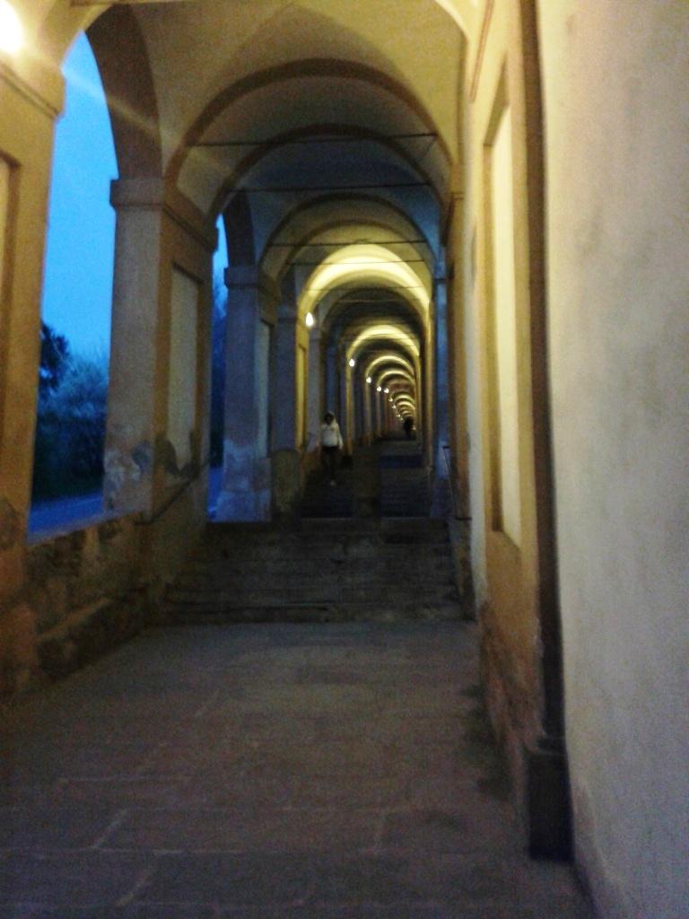 i portici di S. Luca